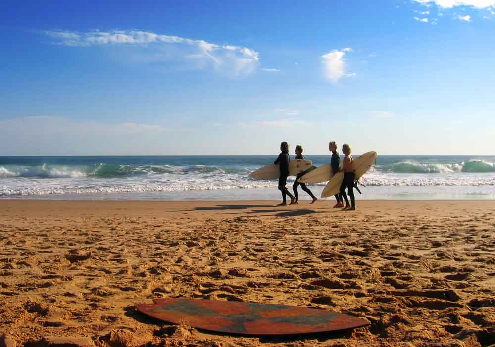 A group of surfers