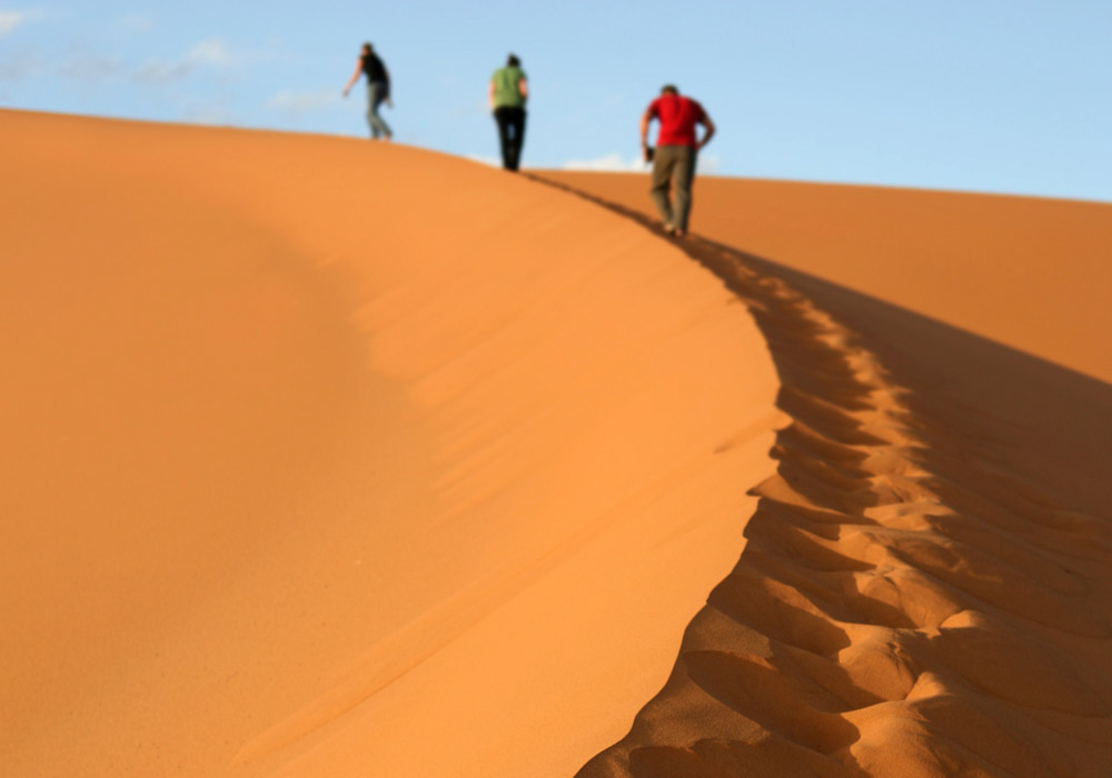 Trekkers in the Sahara
