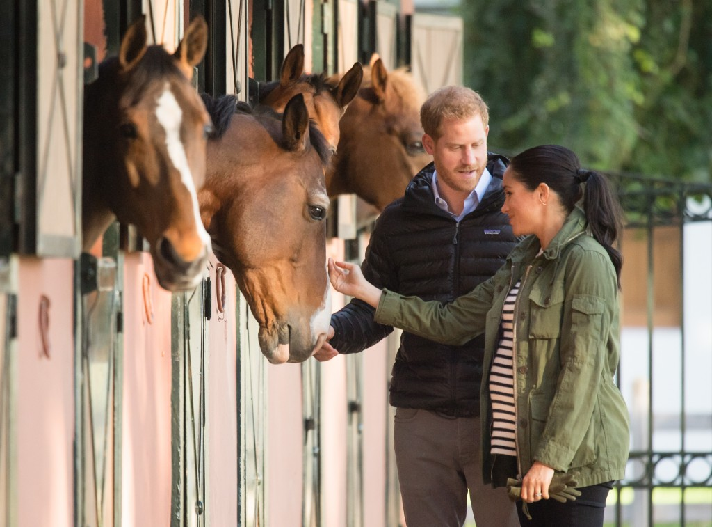 Harry and Meghan with some horses